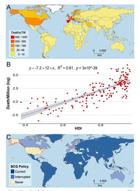 pays vaccination BCG et décès du COVID-19 Etats-Unis