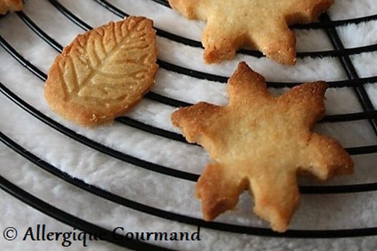 Sablés au gingembre et clémentine