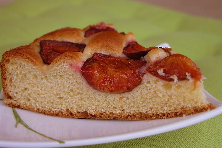 Gâteau brioché aux quetsches