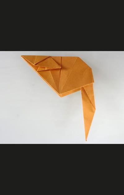 Origami chat - Etape 26