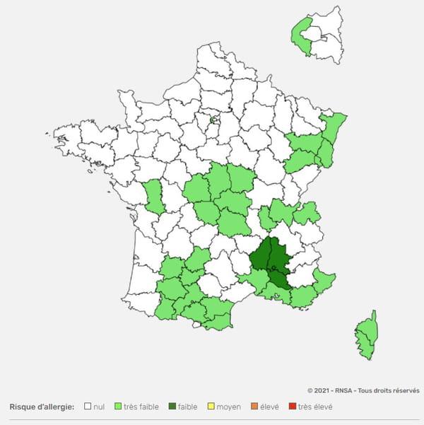 Carte des pollens en France par département OCTOBRE 2021