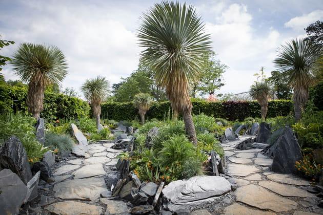 Le jardin des émergences