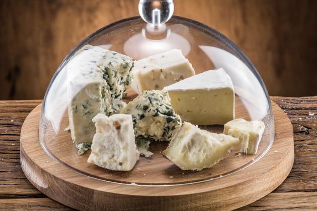 Opter pour une cloche à fromages