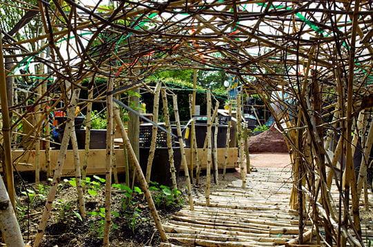 Le jardin poubelle