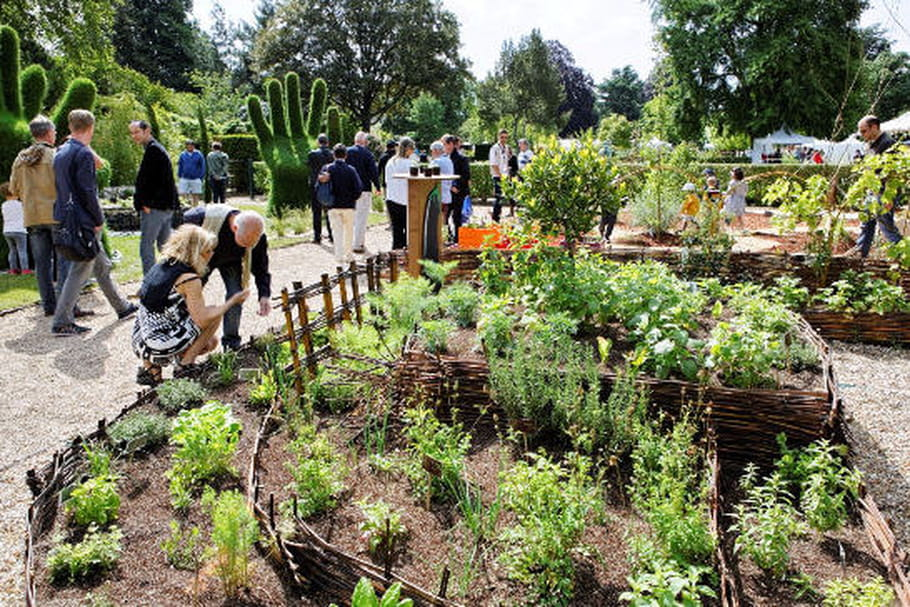 Graines de Jardin : les feuillages rouennais en fête