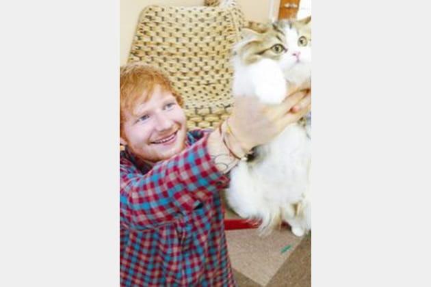 Ed Sheeran joue le remake du Roi Lion