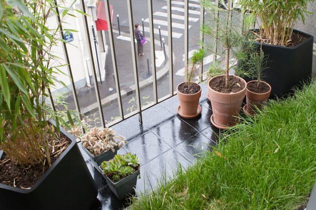 Carré de pelouse sur balcon
