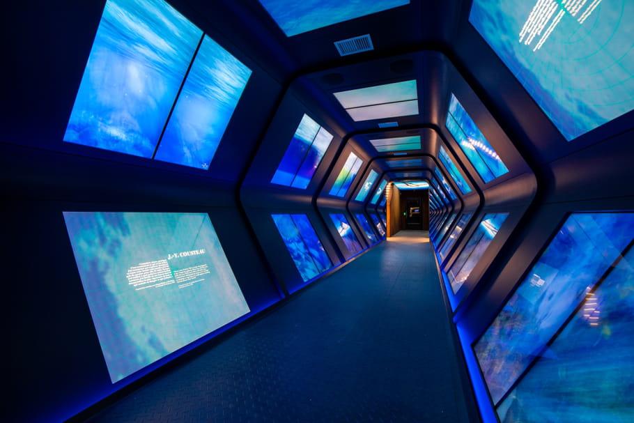 Musée océanographique de Monaco, un voyage au cœur des fonds marins
