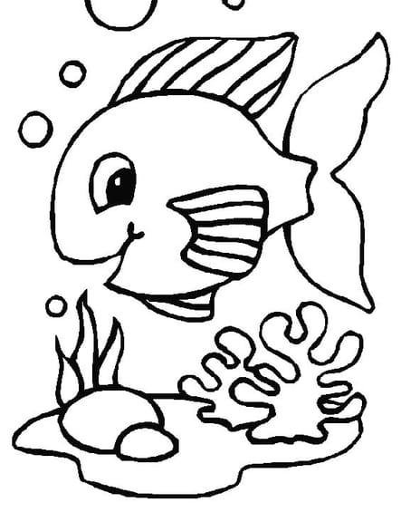 Un mignon poisson