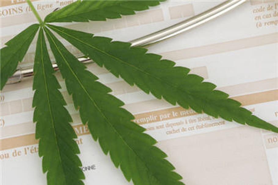 Un malade condamné pour usage thérapeutique du cannabis