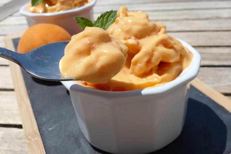 Yaourt glacé à l'abricot (frozen yogurt ou glace express)