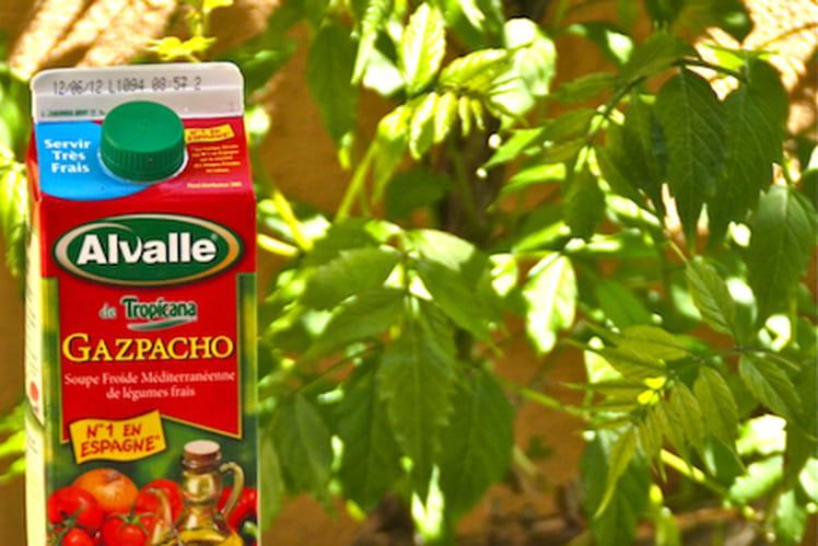 Gazpacho Alvalle et son Tzatziki de fraises