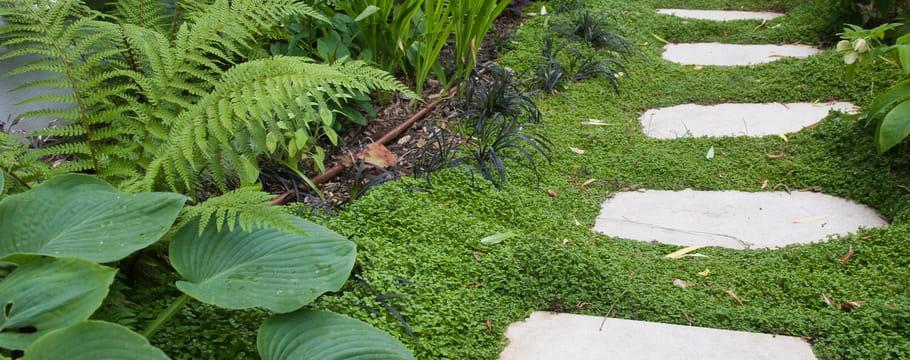 Comment Concevoir Et Amnager Une Alle De Jardin