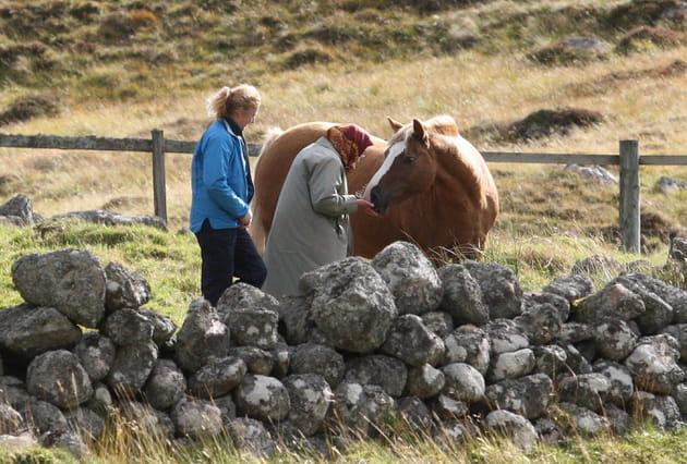 Un amour des chevaux sans borne pour Sa Majesté la Reine Elizabeth II