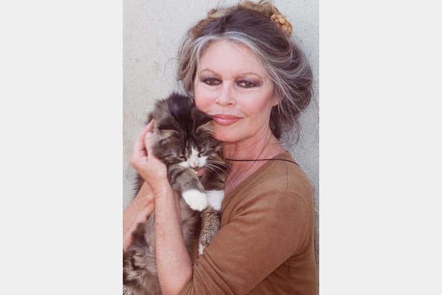 Brigitte Bardot, l'indétrônable