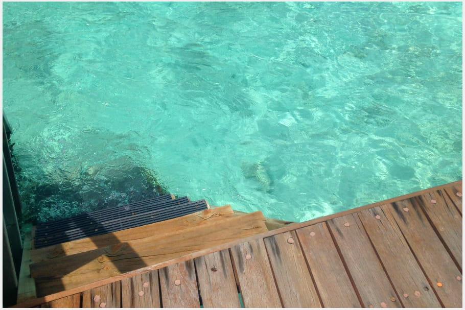 Plongez dans une eau turquoise