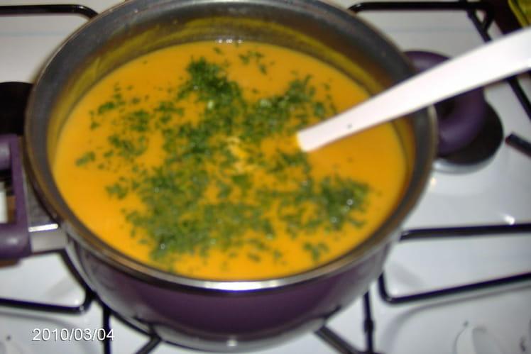 Crème de potiron à la coriandre
