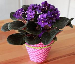 suivez notre pas à pas pour customiser vos pots de fleurs façon color block !