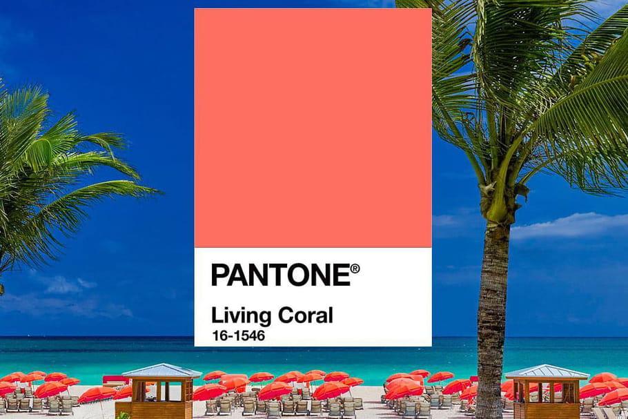 La couleur Pantone 2019est un corail qui donne la pêche!