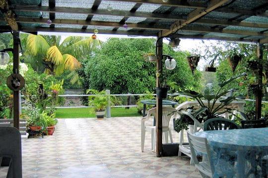 La terrasse tropicale
