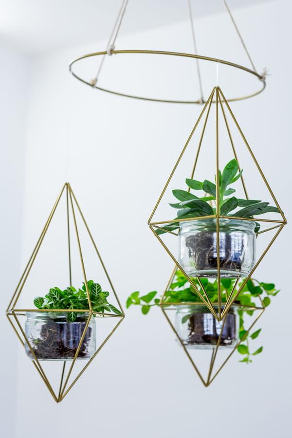 plantes-suspendues-pots-dores-formes-geometriques