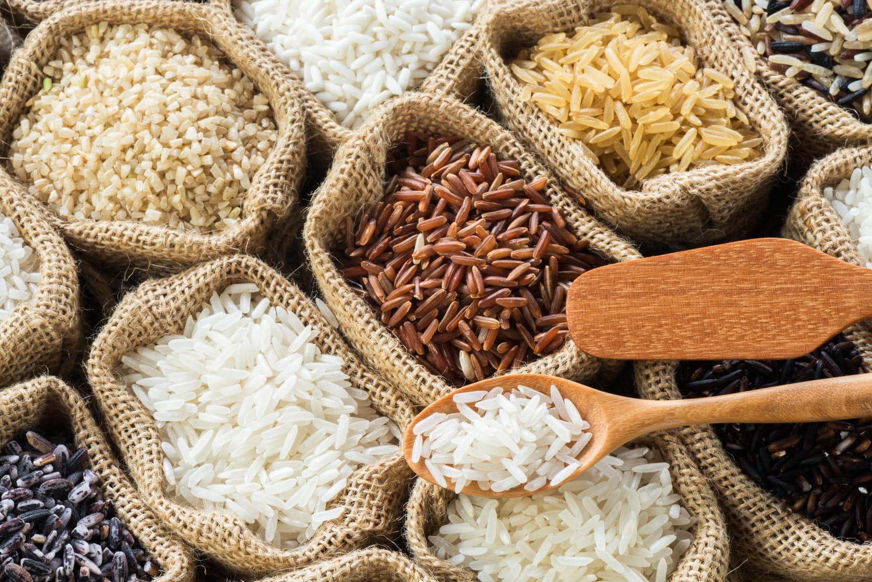 Quel riz choisir pour ma recette?