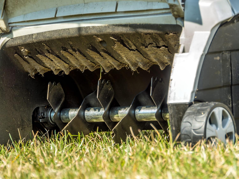 Scarifier une pelouse: quand et comment le faire?
