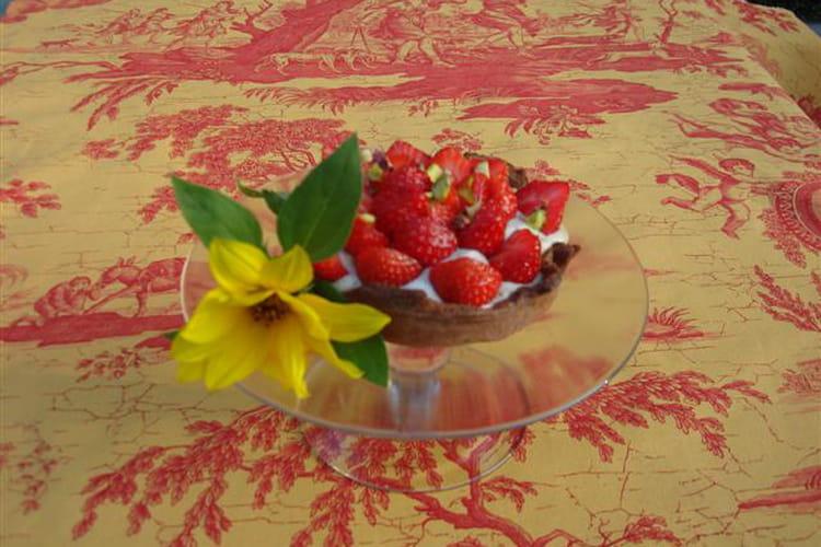 Tartes cacaotées à la crème de pistache et aux fraises