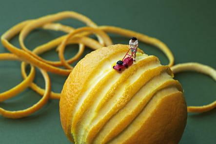 Tondeuse à citron