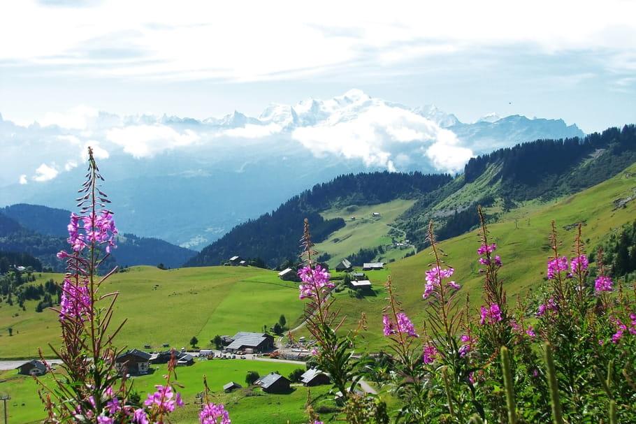 Vacances d'été: la montagne au sommet cette année