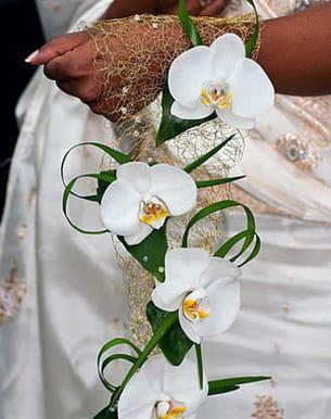bouquet d'orchidées de claire desfachelle
