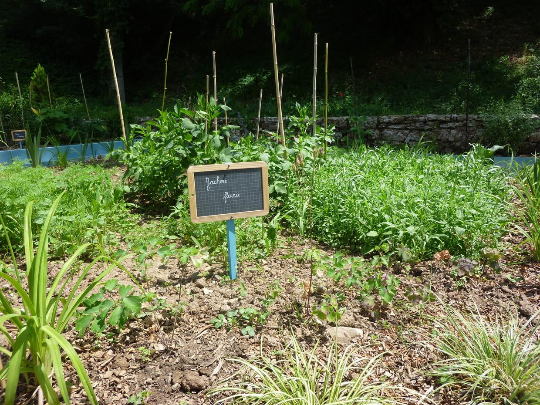 L 39 entretien du jardin for Entretien jardin l union