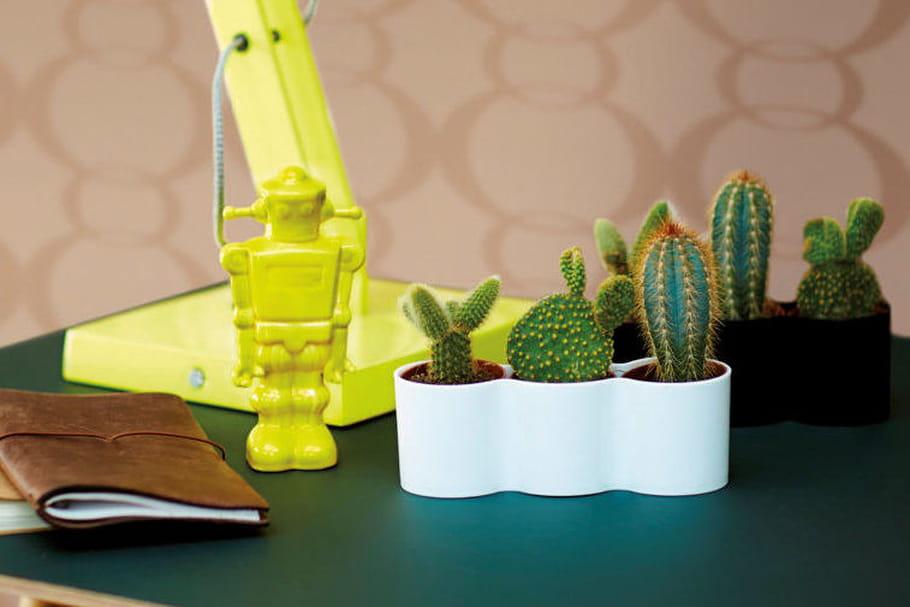 L'objet du désir : le mini pot B. for diamond trio d'Elho