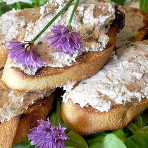 toasts aux rillettes de sardines