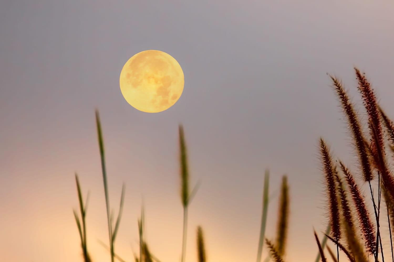 Pleine lune juin 2021: quels signes astro vont être les plus touchés aujourd'hui?