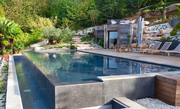 Rénovation de piscine: trophée d'or
