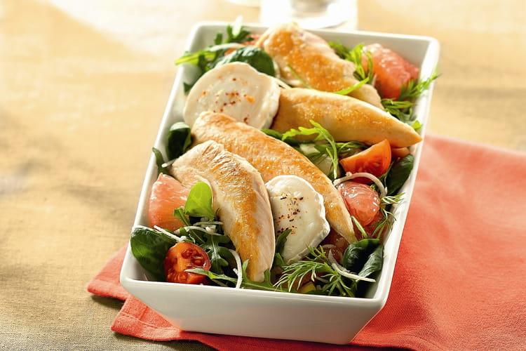 Salade fraîcheur aiguillettes de poulet