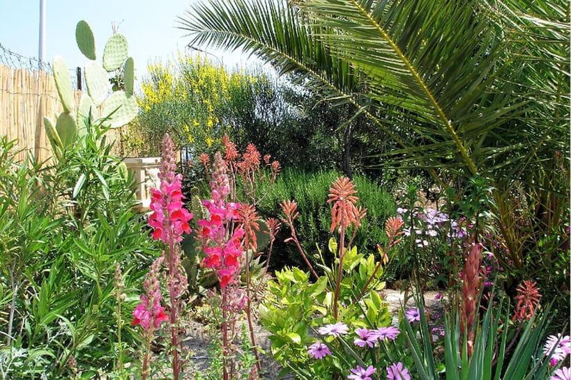 Des jardins méditerranéens exotiques