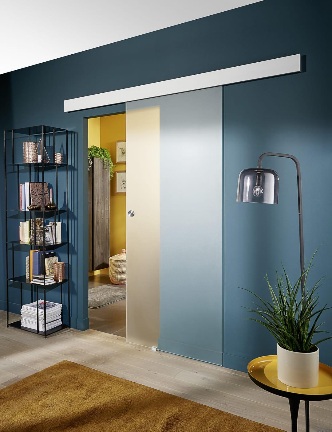 Porte Entree Vitree Opaque comment choisir une porte coulissante ?