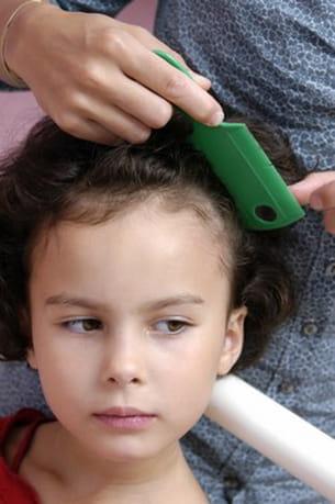 le peigne fin est indispensable pour retirer les lentes après un traitement anti