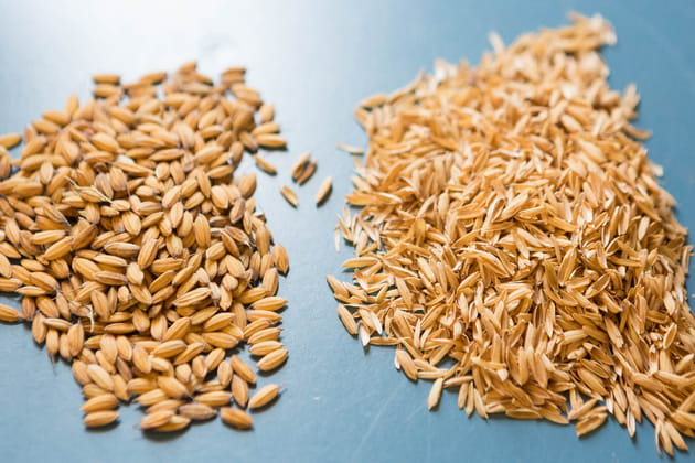L'obtention du riz complet (ou riz cargo)