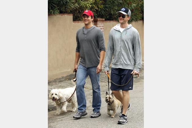 Neil Patrick Harris et David Burtka promènent leurs chiens
