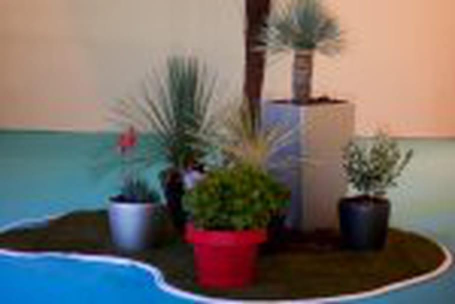 Un salon pour concevoir l'oasis de ses rêves