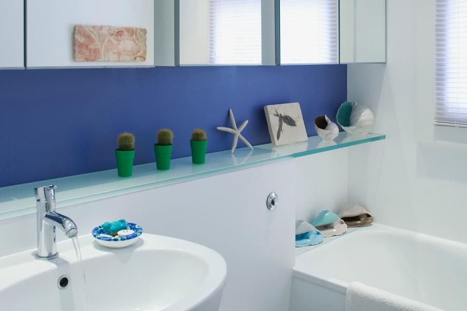 Quelle peinture pour la salle de bains - Peinture anti moisissure salle de bain ...