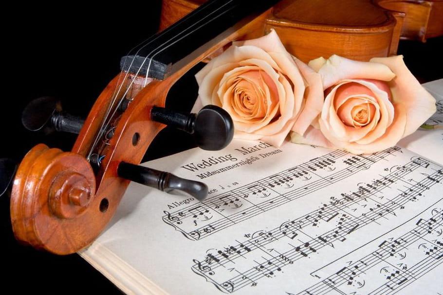 Thème musique : un mariage en cadence !