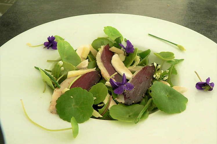Salade d'herbes sauvages, magret fumé et champignons