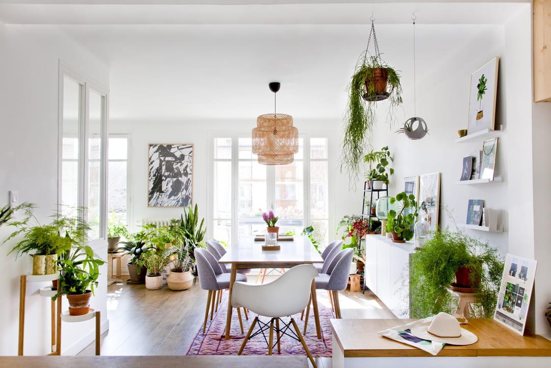salle-a-manger-blanche-plantes-d-interieur