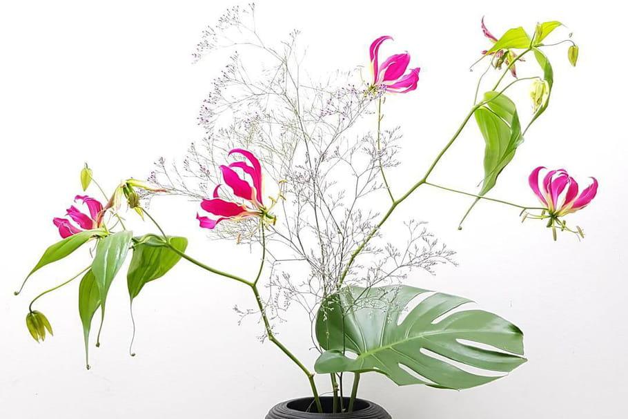 Ikebana: tout savoir sur cet art floral japonais ancestral