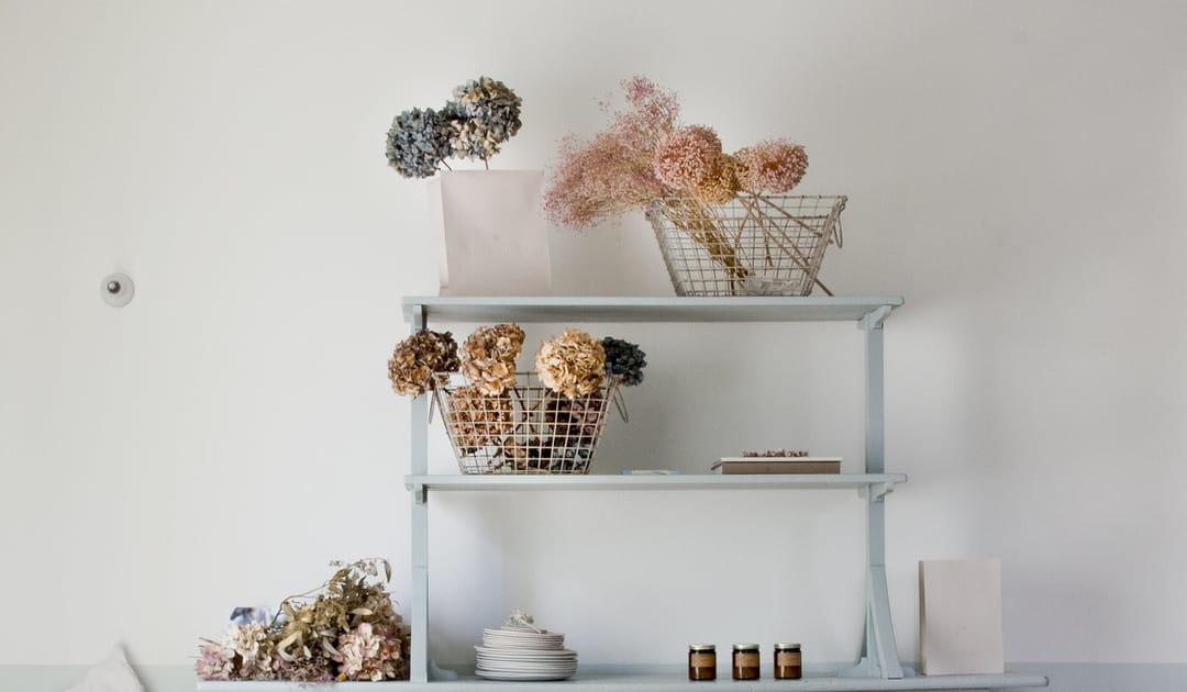 fleurs-sechees-salon