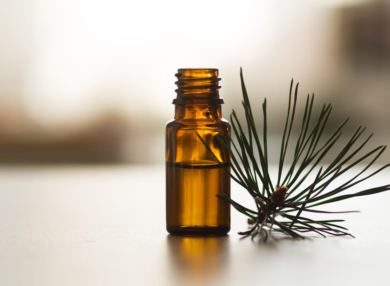 Huile essentielle de pin sylvestre: composition, propriétés, utilisation
